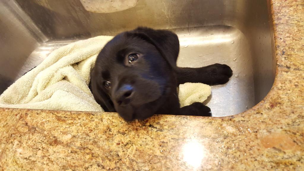 Ruben likes his bath